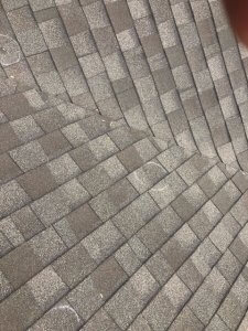 hail damaged asphalt shingles